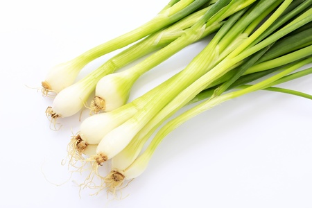 Fresh spring onion  also know as Scallions, Green shallots, Onion sticks, Green onions or Salad onions   photo