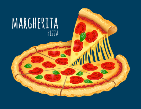 margherita: A vector illustration of a cooked Margherita Pizza Illustration