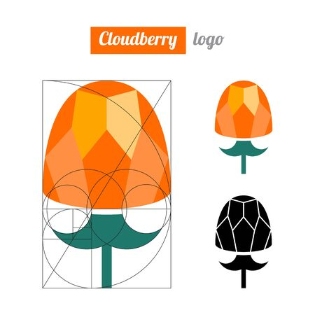 Cloudberry  logo, icon, berry vector illustration. Flat cloudberry logo, icon design for food. Golden ratio. Çizim