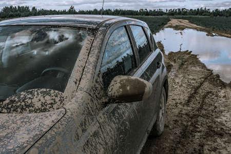 Car stuck in swamp. Off road trip