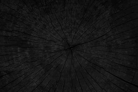 Gebrande houten textuur van gesnoeide boom