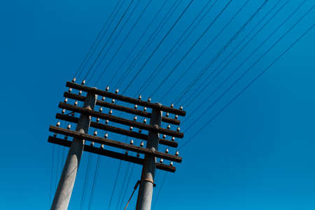 Down view of electric pole on background of blue sky.
