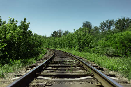 Natural landscape background. Close-up of railroad through green forest in sunny day.