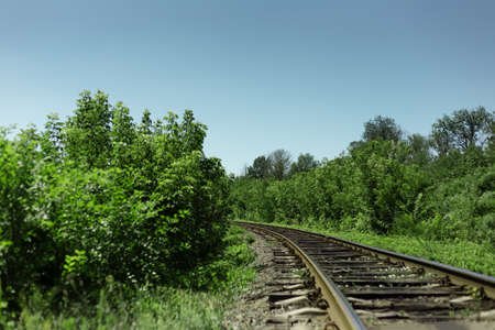 Natural landscape background. Railroad through green forest in sunny day. Copy space concept. 版權商用圖片