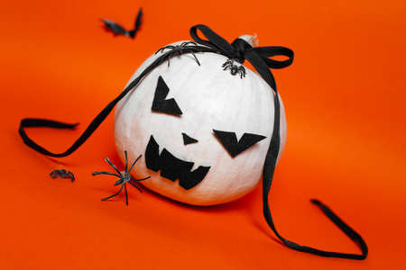 Portrait of white halloween evil pumpkin with black bow on background of orange or lush lava color.