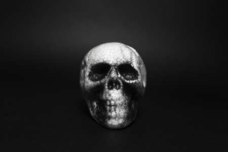 Close-up portrait of anatomical human spooky skull, on background of black color.