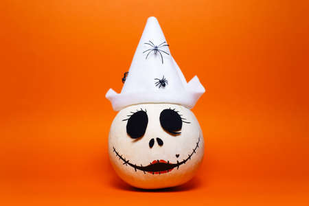 Studio portrait of white halloween pumpkin on background of lush lava color. Stok Fotoğraf
