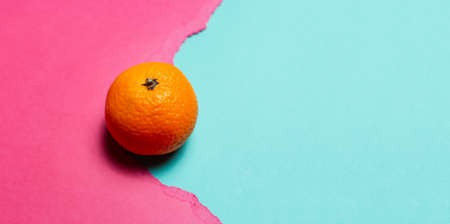 Close-up of orange fruit on cyan background in hole of torn paper of pink color. Panoramic banner view with copy space.