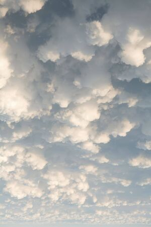 White puffy clouds in the sky