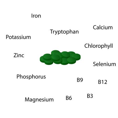 Properties of Spirulina Vitamins B12 vector