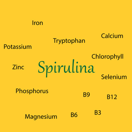 Properties of Spirulina Vitamins Vector