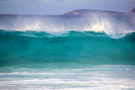 granola: Big Wave