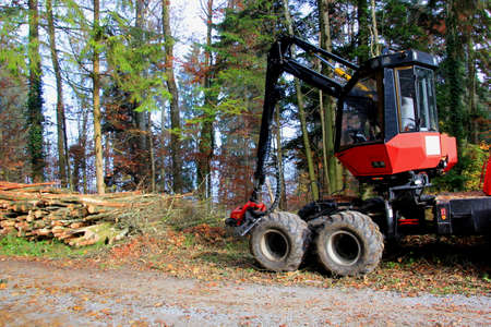 forestry industry: Forestry Industry