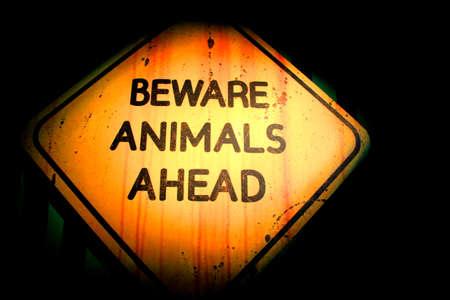 beware animals ahead