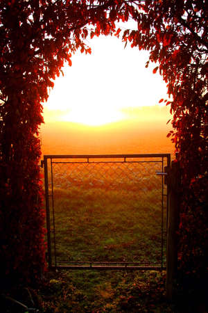 natural light: Gate to the Sun