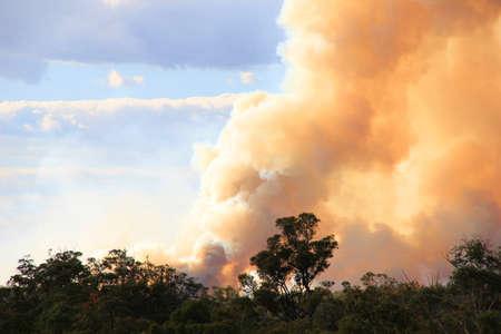 Australijskie bushfire Zdjęcie Seryjne