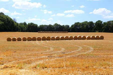 Rural field in france with straw bales ready to pick up Zdjęcie Seryjne