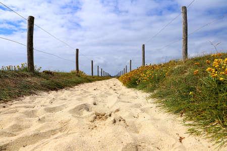 Sandy beach walking on a sunny day in brittany Zdjęcie Seryjne