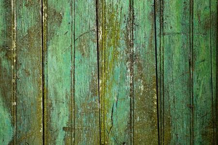 Green weathered wooden planks of a door