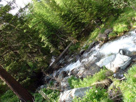encrespado: Un peque�o arroyo de agua con agua picado