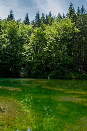 Agoraie Oriented Natural Reserve, Liguria, Italy.