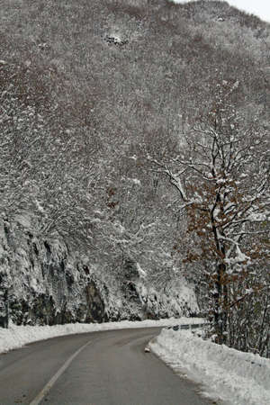 Completely snow-covered mountain road on a cold winter and snow on the branches  photo