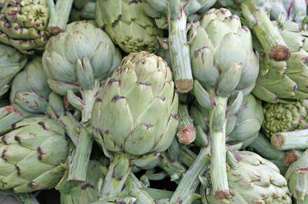 mature green artichokes with stems in the grocery store sales photo