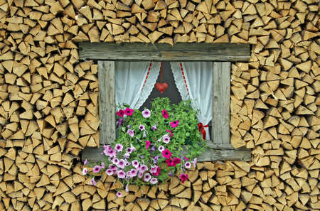 sill: ledge of a window surrounded by flowers freshly cut wood