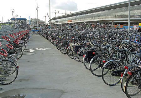 velocipede: hundreds of bicycle parking in a nearby port in the Netherlands