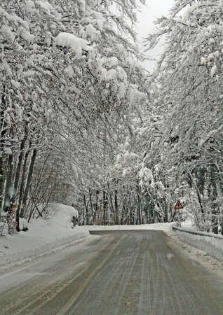 freshly fallen snow: