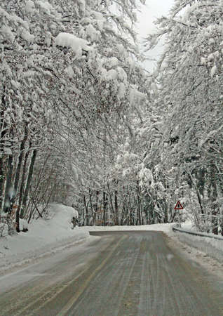 dangerous icy mountain road with the trees full of freshly fallen snow on a cold winter day  Stock Photo - 9364333