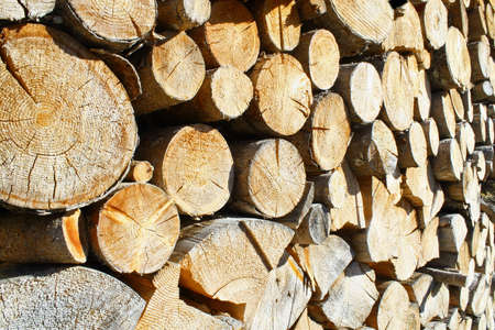 woodshed: logs cut a huge outdoor summer Woodshed