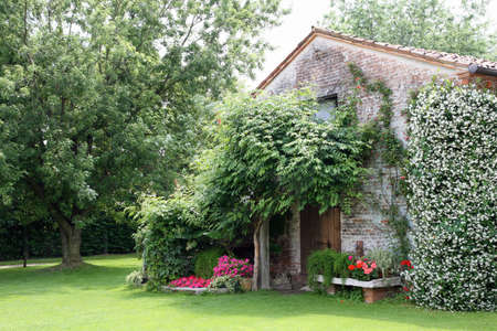 old rural house with garden flowers and white Jasmine