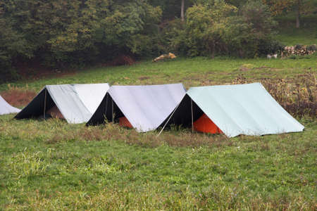 boy scout tents mounted on the grass on a cold winter day