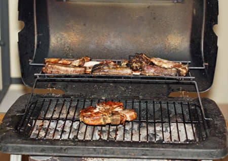 pork ribs and grilled ribs during a barbecue in the garden Stock Photo - 16626356