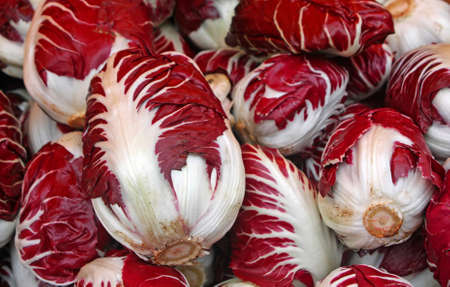 treviso: Red radicchio of treviso for sale by grocery store