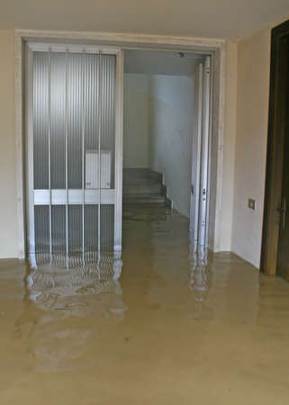 the flood tide: entrance and staircase of the House invaded by mud during a flooding of the River 1