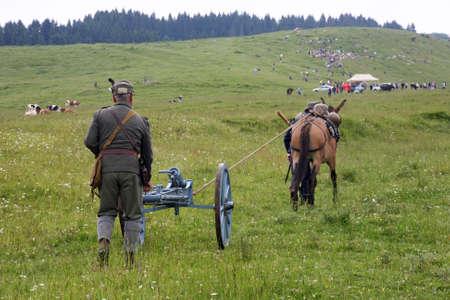 man ass: mule, ass, man, men,