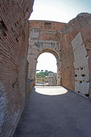 inside the Colosseum of Rome where took place the battle of gladiators  photo
