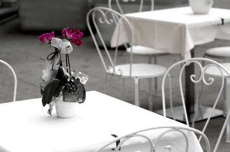 vase of flowers with orchids on the coffee table of a very elegant outdoor cafes and exclusive Banco de Imagens