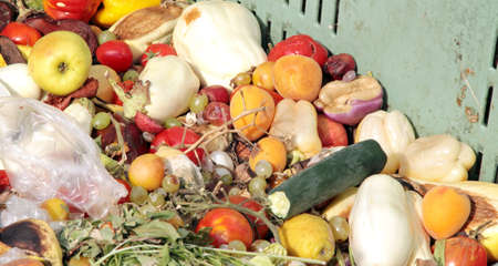 rotten and damaged fruits and vegetables to use photo