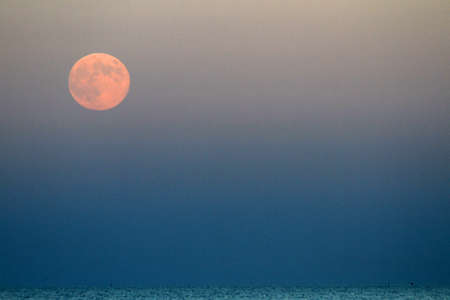 full Red Moon that rises above the blue sea at nightfall photo