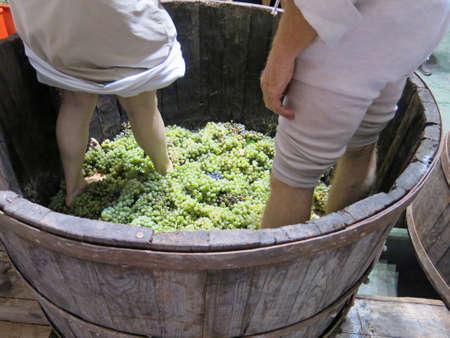 les hommes et les femmes à l'intérieur du réservoir pour appuyer sur les raisins blancs pour faire du vin Banque d'images