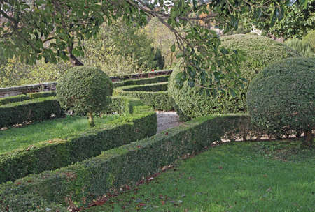 accurately: very nice Italian garden with hedges cut very accurately in the Park a beautiful Venetian villa in Italy Stock Photo