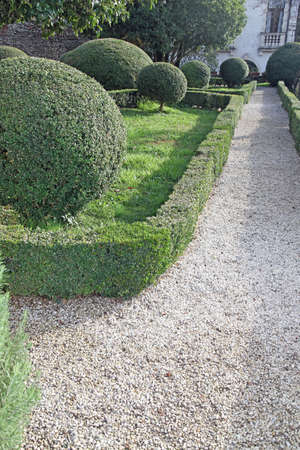 accurately: garden with hedges cut very accurately in the Park a beautiful Venetian villa in Italy
