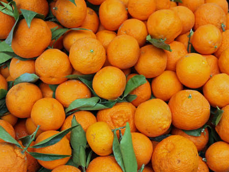 lots of juicy tangerines for sale at vegetable market photo