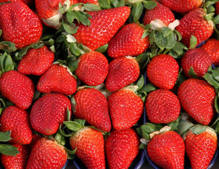 grocery store series: ripe red Strawberry to the delight of gourmands