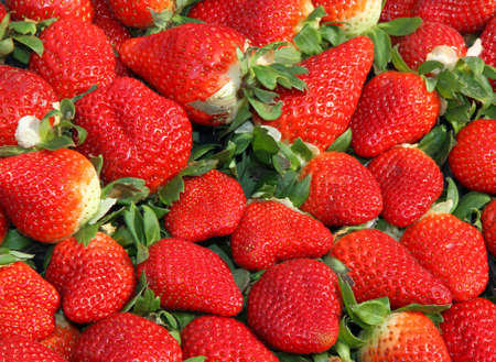 red ripe strawberry cups for sale at vegetable market 2 photo