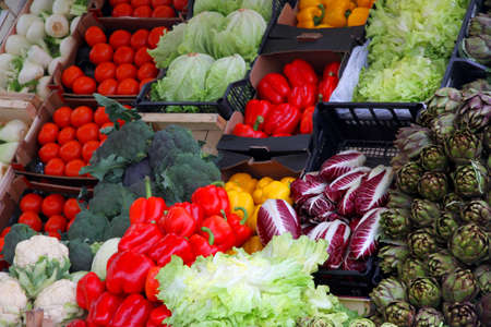 Purple and Red chicory, radicchio, red peppers, red peppers, green artichokes, Salad Greens and other vegetables for sale in the market stand of greengrocers