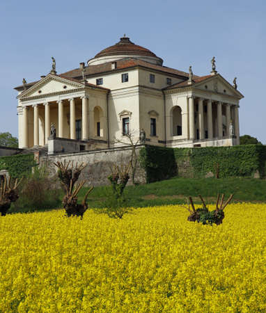 Villa La Rotonda with yellow flower field of rapeseed in Vicenza in Italy